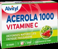 Govital Acerola 1000 à LIEUSAINT