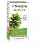 Arkogélules Ananas Gélules Fl/45 à LIEUSAINT