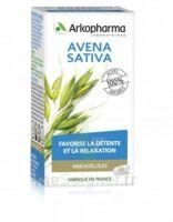Arkogélules Avena Sativa Gélules Fl/45 à LIEUSAINT