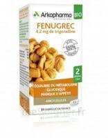 Arkogélules Fenugrec Bio Gélules Fl/40 à LIEUSAINT
