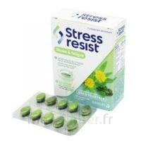 Stress Resist Comprimés Stress & Fatigue B/30 à LIEUSAINT