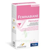 Pileje Feminabiane Périnatal 28 Gélules Blanches Et 28 Gélules Jaunes à LIEUSAINT