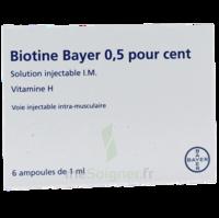Biotine Bayer 0,5 Pour Cent, Solution Injectable I.m. à LIEUSAINT