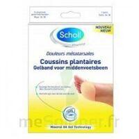 Scholl Coussin Plantaire Douleurs Métatarsales T2 à LIEUSAINT