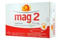 Mag 2 122 Mg S Buv En Ampoule Sans Sucre édulcoré à La Saccharine Sodique 30amp/10ml à LIEUSAINT
