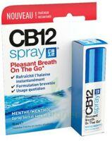 Cb 12 Spray Haleine Fraîche 15ml à LIEUSAINT