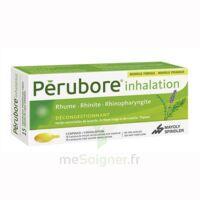 Perubore Caps Inhalation Par Vapeur Inhalation Plq/15 à LIEUSAINT
