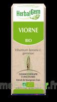 Herbalgem Viorne Macérat Bio 30ml à LIEUSAINT