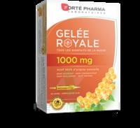 Forte Pharma Gelée Royale 1000 Mg Solution Buvable 20 Ampoules/10ml à LIEUSAINT