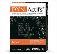 Synactifs Dynactifs Gélules B/30 à LIEUSAINT