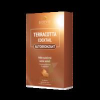 Terracotta Cicktail Autobronzant Comprimés B/30 à LIEUSAINT