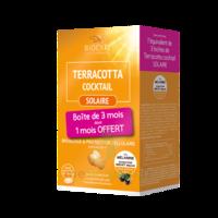 Terracotta Cocktail Solaire Comprimés 3*b/30 à LIEUSAINT