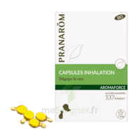Aromaforce Caps Inhalation Bio B/15 + Inhalateur à LIEUSAINT