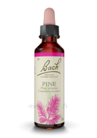 Fleurs De Bach® Original Pine - 20 Ml à LIEUSAINT