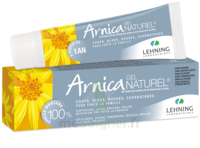 Lehning Arnica Gel T/50g à LIEUSAINT