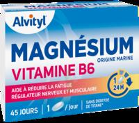 Govital Magnésium Vitamine B6 Comprimés B/45 à LIEUSAINT