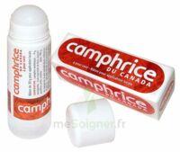 Camphrice Du Canada 4 % Bâton Pour Application Locale Stick/30g à LIEUSAINT