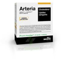 Aminoscience Santé Arteria Gélules 2b/56 à LIEUSAINT