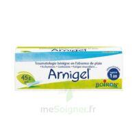Boiron Arnigel Gel T(alumino-plastique)/45g à LIEUSAINT