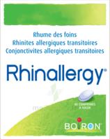 Boiron Rhinallergy Comprimés B/40 à LIEUSAINT