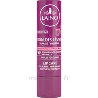 Laino Stick Soin Des Lèvres Figue 4g à LIEUSAINT
